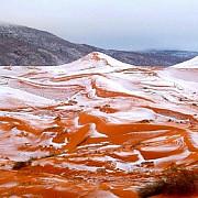 a nins in sahara pentru prima data din 1979