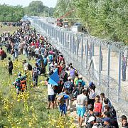 ungaria va construi gardul la granita cu romania