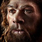 4 din populatie are gene ale omului de neanderthal