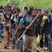 60 de imigranti au trecut azi-noapte in romania