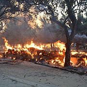 cel putin 24 persoane si-au pierdut viata in timpul evacuarii membrilor unei secte