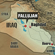 statul islamic a pierdut orasul fallujah trupele irakiene au beneficiat de sprijin american
