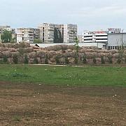 imagini de cosmar in zona parcului municipal vestcum arata proprietatea ciobanului vazuta din parc foto