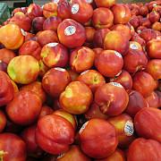 atentie mare la caisele si la nectarinele din turcia avertisment ansvsa