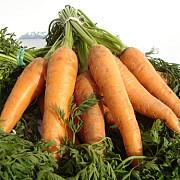 produsele lactate legumele si pestele gras printre alimentele care ajuta la pastrarea sanatatii vederii