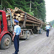 proprietarii de paduri cu suprafata de pana in 30 de hectare vor beneficia de paza gratuita a suprafetelor forestiere