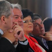 aripa democrat-liberala din pnl alege inlocuitorul lui vasile blaga la sefia partidului liberalii cer presedintie unica