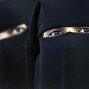 valul islamic interzis in norvegia ce alte tari s-au alaturat acestui demers