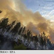 incendiile de padure continua sa faca ravagii in portugalia si spania