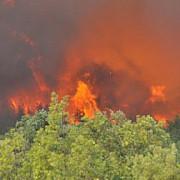 incendiile de pe insula thassos frecventata de romani se extind cel putin un pompier a fost ranit in timpul interventiei