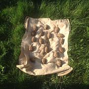 21 de grenade gasite in ultimele 24 de ore pe camp in comuna gherghita