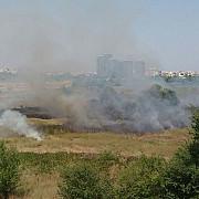 pompierii intervin pentru stingerea unui incendiu de vegetatie in parcul natural vacaresti