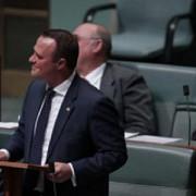 un deputat australian si-a cerut in casatorie partenerul in plina dezbatere in parlament