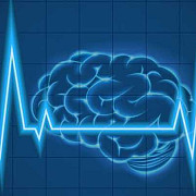 statele unite investesc 65 de milioane de dolari pentru crearea unei interfete creier - computer care sa functioneze in ambele directii