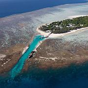 marea bariera de corali a fost declarata moarta de oamenii de stiinta