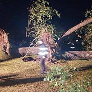 unsprezece persoane intre care cinci copii sunt internate in urma furtunii din bihor