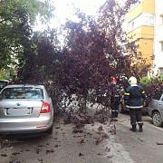 igsu inundatii in mai multe judete in capitala 28 de copaci au cazut in timpul furtunii avariind patru masini