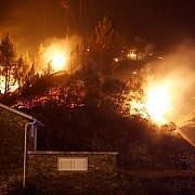 lupta cu incendiul de padure din portugalia continua in timp ce bilantul victimelor a ajuns la 63