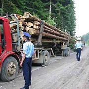 camion cu arbori nemarcati transportati pentru holzindustrie schweighofer depistat de jandarmi in prahova