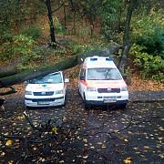 un copac a cazut peste doua ambulante la brasov nu exista victime
