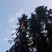 doi parapantisti au ramas agatati intr-un copac in busteni foto