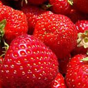 capsunele in fruntea listei fructelor si legumelor cu pesticide pentru al treilea an consecutiv