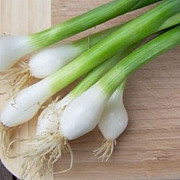 cel mai puternic detoxifiant ceapa verde leguma care alunga microbii si mananca zahar