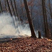 incendiu de padure intre doua vai din azuga accesul pompierilor extrem de dificil