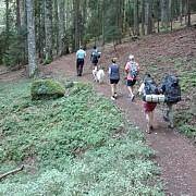 turisti cehi escortati de jandarmi pana la busteni dupa ce s-au speriat de un urs intalnit pe traseu