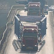 transport agabaritic pe ruta portul oltenita- dn1a circulatia ingreunata pana duminica 4 februarie
