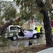 un cetatean roman a murit in malta dupa ce un copac a cazut pe masina in care se afla sotia sa se afla la spital