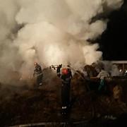 din nou incendiu la adapostul de caini de la stancesti prahova al doilea in mai putin de un an