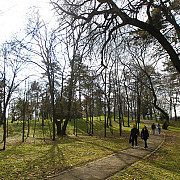 vine primavara in ultimele zile din martie si la inceputul lui aprilie vor fi temperaturi cuprinse intre 16 si 22 de grade