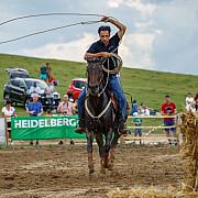 premiul cailor de 4 ani si demonstratie de dresaj cu denis stefan duminica pe hipodromul ploiesti