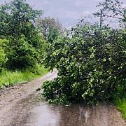 vremea rea a facut ravagii in prahova copaci cazuri localitati fara curent orasul mizil in intuneric