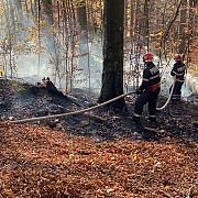 fotovideo arde padurea la sinaia zona piscul cainelui