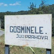 cu doar trei cazuri de coronavirus comuna cosminele este in scenariul rosu