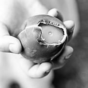 incredibil un baietel a murit inecat cu o jucarie dintr-un ou de ciocolata