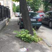 foto ploiestiul orasul parasit strada il caragiale abandonata de autoritati