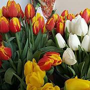 8 martie ziua in care femeile nu primeau flori si se luptau pentru niste drepturi elementare