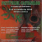festivalul concurs national de interpretare a muzicii folk festivalul castanilor in memoriam gabi dobre