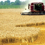 terenurile agricole lucrate tractoarele si utilajele agricole nu vor mai fi impozitate