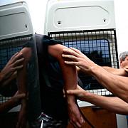 mai multi lideri ai unei grupari interlope din craiova au fost arestati preventiv dupa un scandal intr-un bar