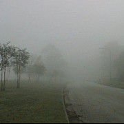 cod galben de ceata in mai multe judete din tara