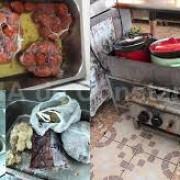 teapa de pe litoral hamsiile sunt o mare pacaleala mizerie de nedescris in restaurante