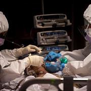 medic nu crezi in covid atunci hai cu noi in terapie intensiva fara masca si respira adanc parca e altfel decat cand urli in piata