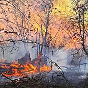 incendiu cernobal incendiul de proportii izbucnit saptamana trecuta in padurea radioactiva de langa cernobal nu a fost stins nici pana astazi