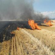 30 de incendii de vegetatie in 48 de ore in prahova