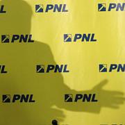 criza in pnl tribunalul bucuresti a respins modificarile aduse statutului pnl la congresul din iunie