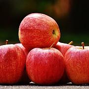 cat de toxice sunt merele le ce fel de afectiuni pot da nastere sufera cel putin 20 de tratamente cu pesticide in 12 luni